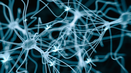 Changed Potassium Levels In Neurons May Engender Mood Swings In Bipolar Disorder