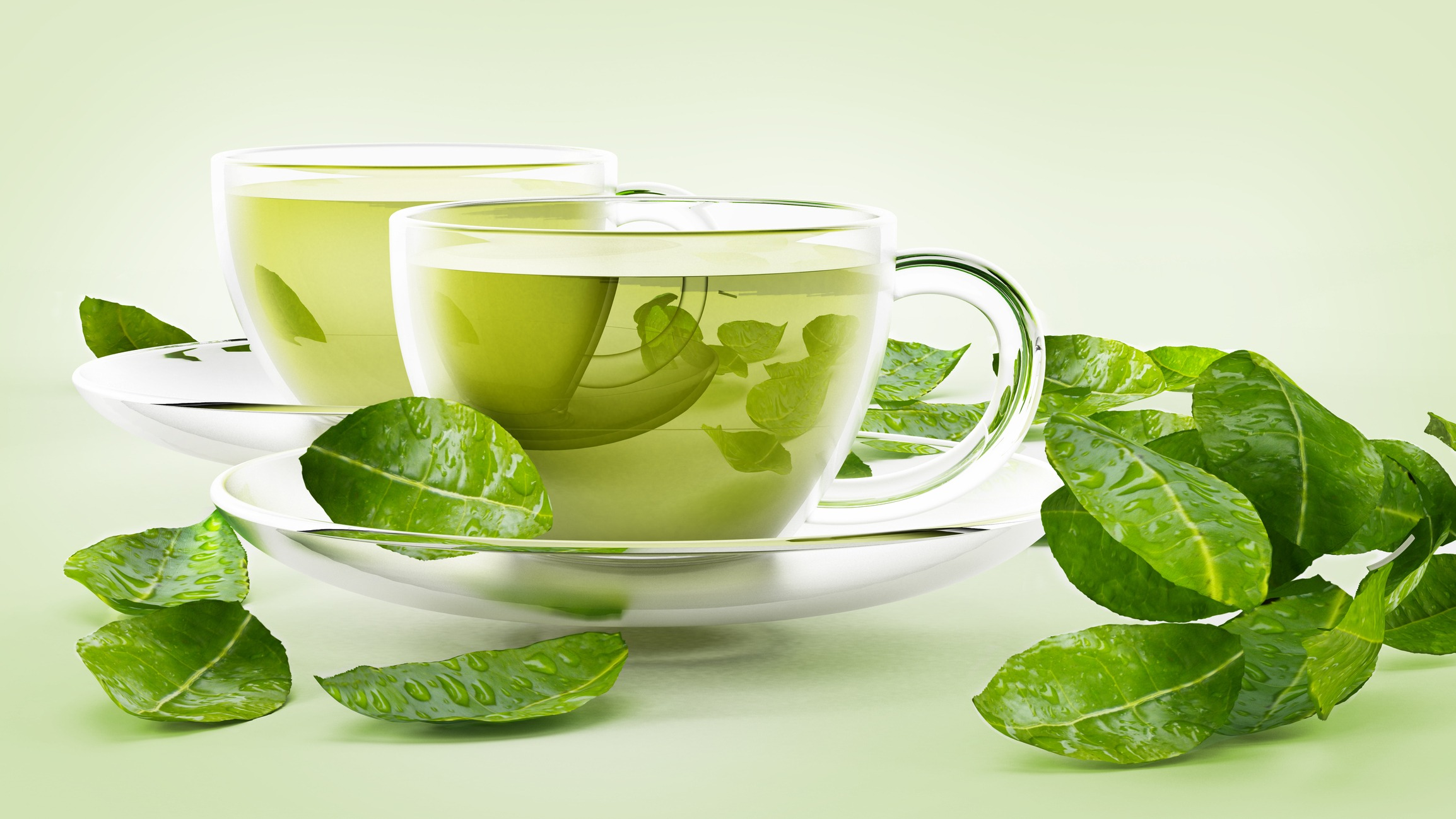 Green-Tea-Essence-Incorporated-With-Exercise-Lessens-Fatty-Liver-Illness-In-Mice